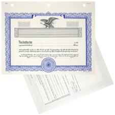 Black Duke 11 Stock Certificates